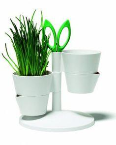 Herb Stand hierbas Carcasa