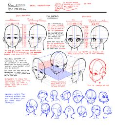 Nsio explains: Facial Proportions by Nsio.deviantart.com on @deviantART http://nsio.deviantart.com/art/Nsio-explains-Facial-Proportions-402081332 ★ || CHARACTER DESIGN REFERENCES キャラクターデザイン  • Find more at https://www.facebook.com/CharacterDesignReferences & http://www.pinterest.com/characterdesigh and learn how to draw:  bandes dessinées, dessin animé, çizgi film #conceptart #animation #toons #manga #historieta #strip #settei #fumetti #anime #cartoni #animati #comics || ★
