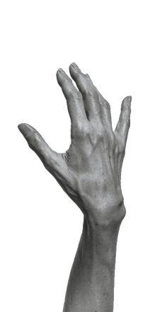 Hand Drawing Reference, Human Poses Reference, Anatomy Reference, Photo Reference, Drawing Hands, Tyler The Creator Wallpaper, Hand Anatomy, Human Body Art, Anatomy Poses