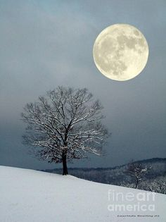 winter's moon, by laurinda bowling, via fineartamerica.com