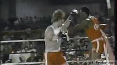 The referee gets knocked down | Gif Finder – Find and Share funny animated gifs