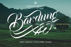 Bandung + Aceserif by dexsarharryfonts on @creativemarket