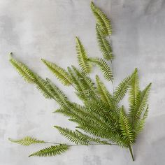Add an everlasting touch of green indoors with this remarkably realistic bunch of faux fern fronds.