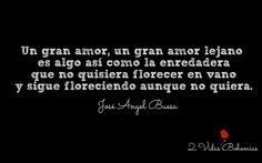 Jose Angel Buesa, Frases.