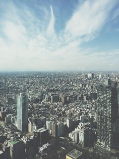 View from Tokyo Metropolitan Building | theswirlingspoon.com