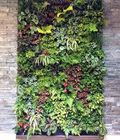 Wholesale Artificial Outdoor Green Wall Module Vertical Garden Environmental, View green wall vertical garden, EasyNature, EasyNature Product Details from Shenzhen NatureEasy Crafts Design Co.
