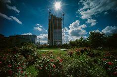 Grattacielo Intesa-Sanpaolo in primavera - Mattia Boero Fotografo