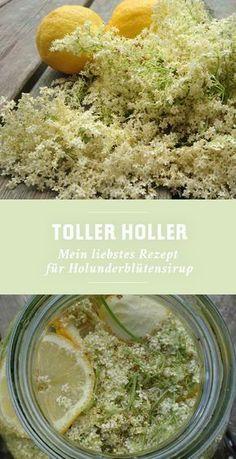 Hollersaft selber machen » Rezept für Holunderblütensirup