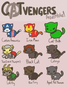 I used to have a LoKitty! His real name was also Loki. *squee!*