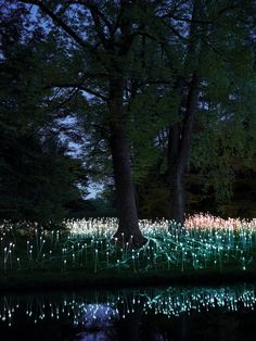"British light artist Bruce Munro has announced his second-ever U.S. show. He will return to exhibit ""Light,"" a collection of 10 large-scale outdoor lighting installations coupled with indoor sculptures at the Cheekwood Botanical Garden in Nashville, Tennessee.."