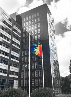 Het is deze week feest in ons land: deze week is namelijk de Amsterdam Pride Week! Pride Week, Land, Diversity, Amsterdam, Skyscraper, Multi Story Building, Action, Skyscrapers, Group Action