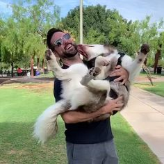 Are Huskies Good With Kids/babies? We Explore The Husky Temperament, Huskies With Babies, Kids, Children, Other Dogs + 5 Family Tips! Cute Puppies, Cute Dogs, Puppy School, Dog Attack, Dog Tattoos, Dog Memes, Family Dogs, Funny Videos, Pets