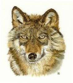 Wolf by Tanja Berlin.  Berlin Embroidery Designs Embroidery Publications: Thread Painting , Needle Painting Designs in the A-Z of Thread Painting