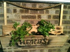 Pallet Wall Hanging Herb Planter | 99 Pallets