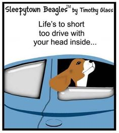Sleepytown Beagles Cartoons / k.jpg