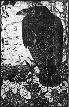 """crow for those who knew my dad they may have heard him sing """"the crow came in & sat on a pin"""". Crow Art, Raven Art, Bird Art, Raven Totem, Blackbird Singing, Quoth The Raven, Jackdaw, Crows Ravens, Foto Art"""