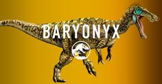 Baryonyx is one of the largest fish-eating dinosaurs. Its crocodile-like head and dangerous claws make it a master hunter of rivers and lakes for Cretaceous-era sushi.