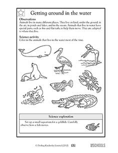 3rd grade 4th grade science worksheets be kind to mother nature earth science and activities. Black Bedroom Furniture Sets. Home Design Ideas