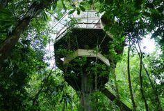 Finca Bellavista Baumhäuser, Costa Rica #treehouse