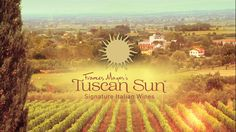 Under the Tuscan Sun Script Under The Tuscan Sun, Home Tv, Italian Wine, September 11, Wine Country, Ny Times, Lineup, Bestselling Author, Tuscany