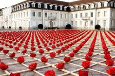 1000 Roses Zweibrucken, Germany