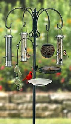 Holiday Gifts for Bird Lovers