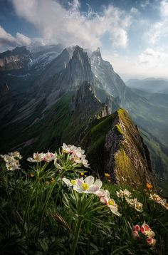 Appenzell, Switzerland, Simone Cmoon Just in case you ever needed a reminder that our planet is a stunningly beautiful place, the fifth annual Landscape Photographer of the Year competition winners have been announced, and they don't disappoint. Beautiful World, Beautiful Places, Stunningly Beautiful, Mountain Landscape, Urban Landscape, Abstract Landscape, Landscape Architecture, Tiered Landscape, Landscape Fabric