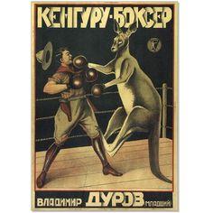 Постер/холст «Кенгуру-боксер» - купить в интернет-магазине Printdirect.ru