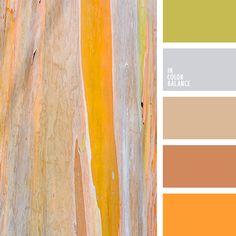Цветовая палитра №2656