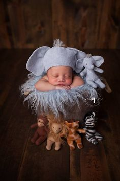 So adorable! We have all these little lovies discounted in the Noah's Ark bundle. Thanks for sharing your cute image, Sofi M Guerra Photography Newborn clothing photography props