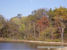 Nice Lake Front Lot with 230 ft of Lake Front. Mostly Wooded and in Bollinger Creek Cove. Great Location with Cove protection in Climax Springs MO