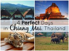 4 Perfect Days in Chiang Mai, Thailand | Complete guide and itinerary (with alternate suggestions) for how to spend 4 days in #Chiang #Mai #Thailand
