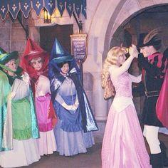 Aurora Prince Philip and the Three Fairies Disney Love, Disney Magic, Disney Frozen, Disney Stuff, Disneyland Princess, Disneyland Paris, Disney Princess, Vintage Disneyland, Disneyland Face Characters