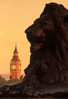 Landseer lion & Westminster Palace - at sunset.