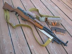 Would love to own a SKS. I love the way it shoots.