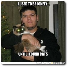I used to be lonely - until I found cats!