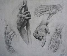 #academic_drawing #pencil_drawing #movement #hands #fingers #phalanx