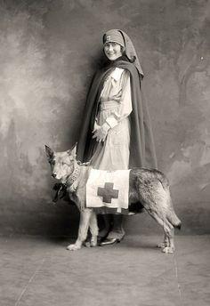 nurse and rescue dog
