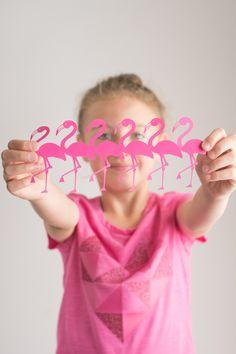 Flamingo Pink! - Sum
