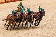 Chariot race at Puy du Fou, France Culture Of France, Courses, Racing, Horse Stuff, Pictures, David, Animals, Celebrities, Holiday
