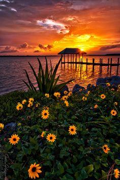 Sunset over Hutchinson Island, Florida