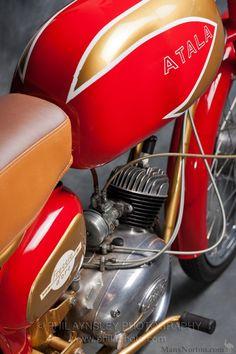 Atala freccia d'oro Moped Scooter, Arrow, Motorbikes, 1920s, Motorcycles, Wheels, Photography, Eye, Classic