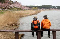 바다와 호수 사이의 길, 강릉 바우길 http://www.sisainlive.com/news/articleView.html?idxno=10207