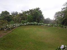 Lindo jardin