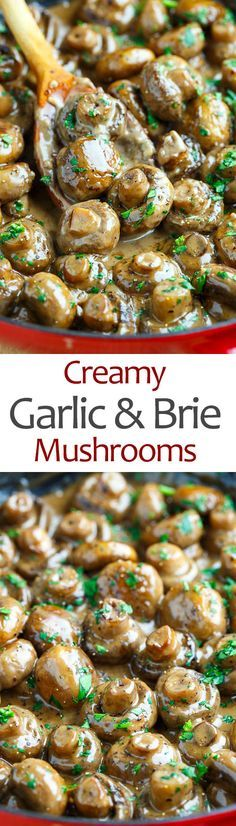 Creamy Garlic and Brie Mushrooms                                                                                                                                                                                 More Keto Mushrooms, Creamy Garlic Mushrooms, Chinese Mushrooms, Creamy Garlic Chicken, Mushrooms Recipes, Grilled Mushrooms, Morel Mushroom Recipes, Tasty Vegetable Recipes, Healthy Mushroom Recipes