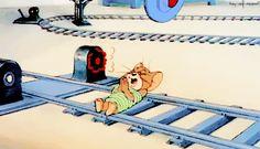 tom and jerry cat cartoon cartoons tom
