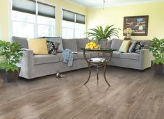 Light brown and gray #laminate wood floor for living room design. Nutmeg Chestnut by Mohawk.