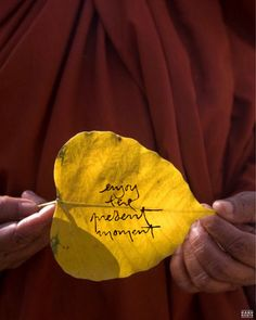 Enjoy the present moment. Leaf Quotes, Buddhist Quotes, Thich Nhat Hanh, Iphone Wallpapers, Leaves, Calligraphy, In This Moment, Instagram, Calligraphy Art