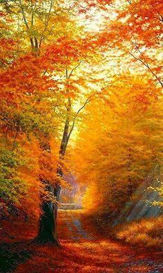 Mais um belo dia de sol desponta trazendo uma recarga especial de esperança e alto astral. Bom dia!