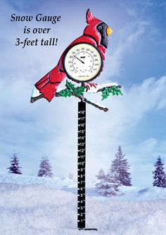 Holiday Cardinal Thermometer & Snow Gauge